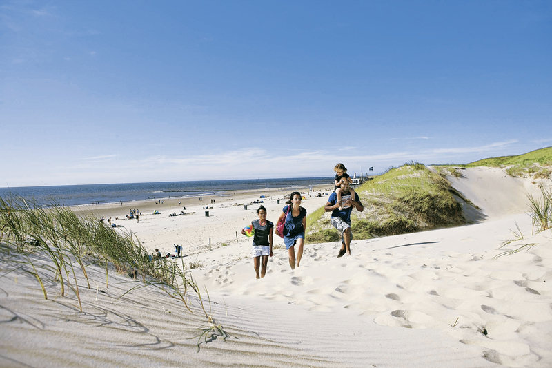 ferienpark-landal-beach-resort-ooghduyne-landal-beach-resort-ooghduyne-holandia-polnocna-holandia-polnocna-wyglad-zewnetrzny.jpg