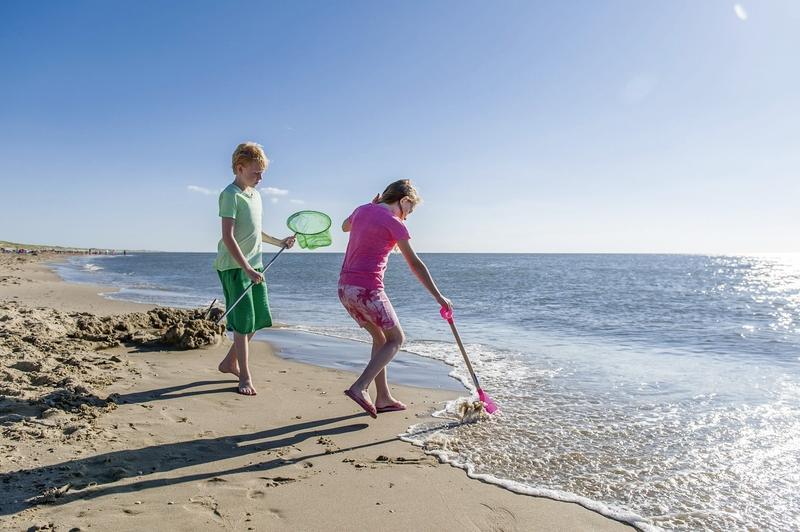landal-beach-resort-ooghduyne-holandia-holandia-polnocna-julianadorp-widok.jpg