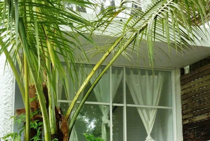 bliss-hotel-seychelles-seszele-seszele-glacis-bar.jpg