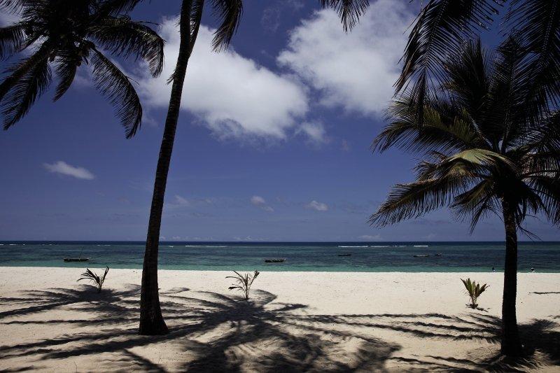 she-she-beach-resort-kenia-wybrzeze-kenii-tiwi-beach-widok-z-pokoju.jpg