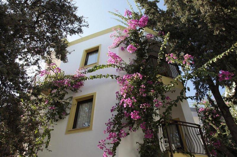 la-luna-hotel-ex-abacus-la-luna-hotel-turcja-polwysep-bodrum-gumbet-wyglad-zewnetrzny.jpg