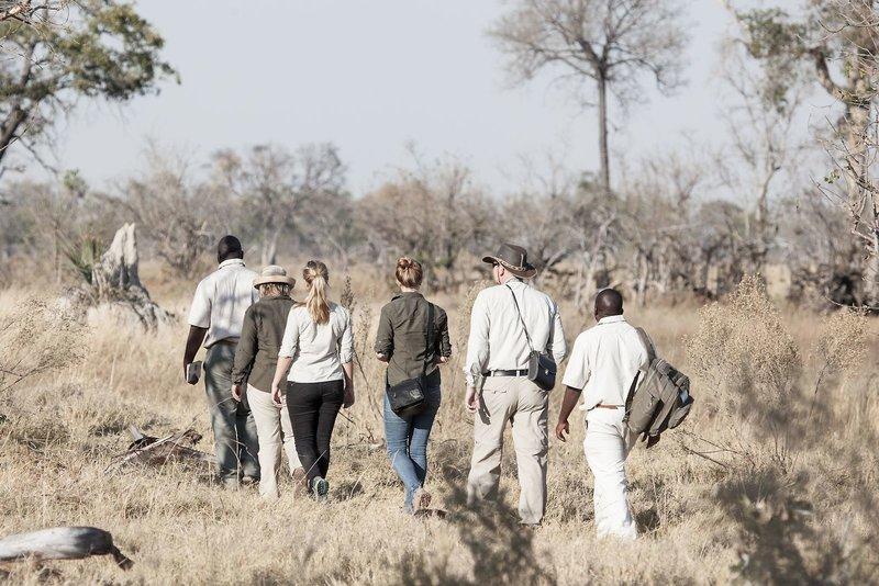 gunn-s-camp-botswana-park-narodowy-okavango-delta-bar.jpg