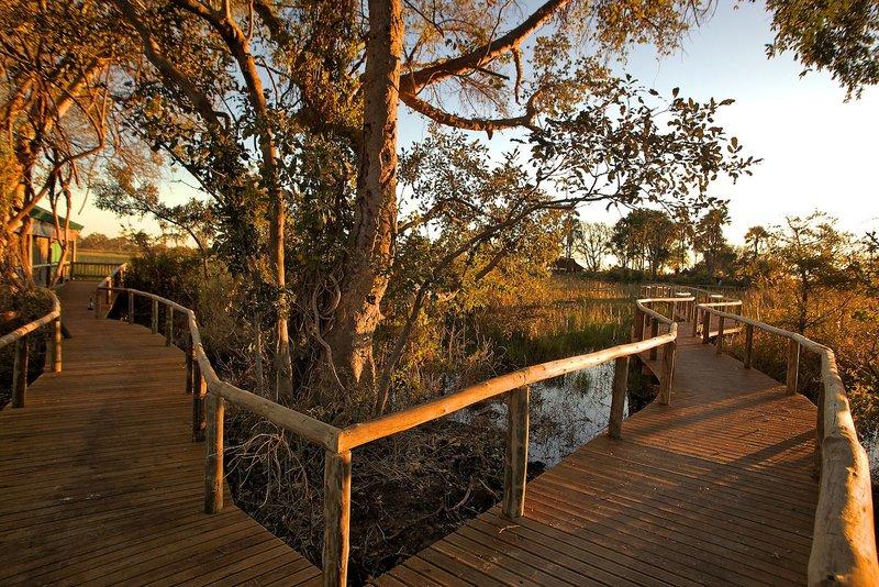 gunn-s-camp-botswana-park-narodowy-plaza.jpg