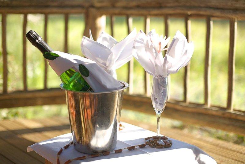 gunn-s-camp-botswana-recepcja.jpg
