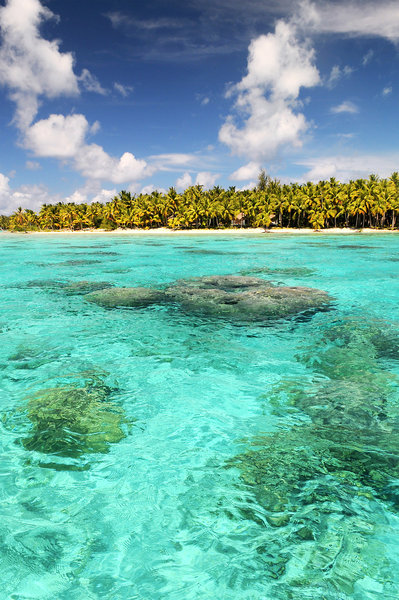 aranui-polinezja-francuska-morze-recepcja.jpg