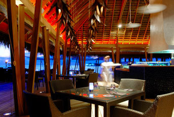 w-maldives-retreat-spa-malediwy-atol-nord-ari-ogrod.jpg