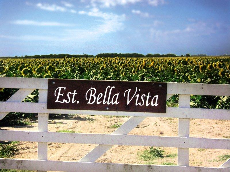 estancia-bella-vista-de-guerrero-argentyna-widok-z-pokoju.jpg